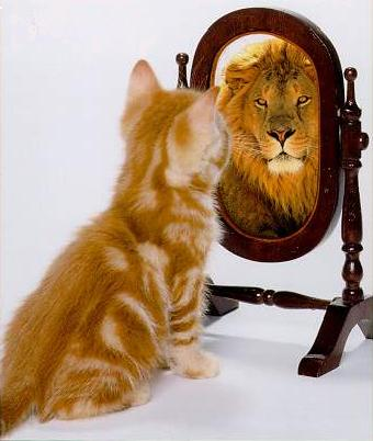 http://www.hitrovka-studio.ru/wp-content/uploads/2013/01/cat-lion.jpg